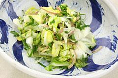 otona_kyabetsu3