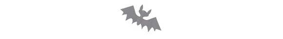bats_03