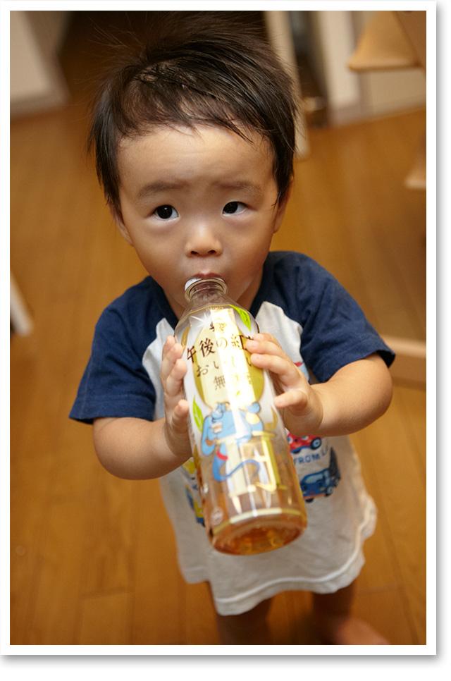 子ども用のマグを拒否し、ペットボトルでしか飲み物を飲まないたもん。正直面倒くさい…。
