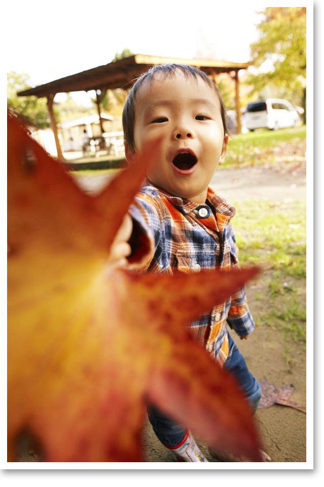 家族でキャンプへ。落ち葉を拾ってご機嫌♪